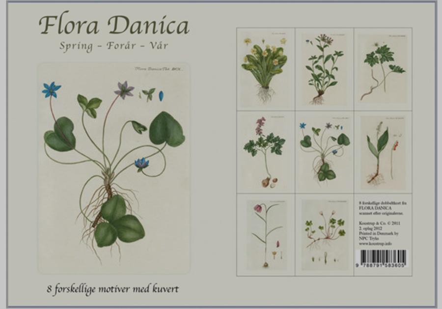 Flora Danica i Billedsamlingen