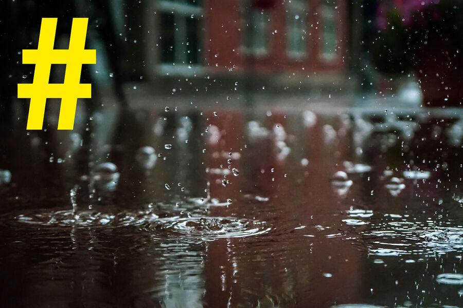 Bøger til en regnvejrsdag. Foto: Vlad Chetan
