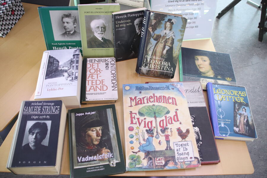 Bøger skrevet af forfatterne, der er med i Klassikerkampen