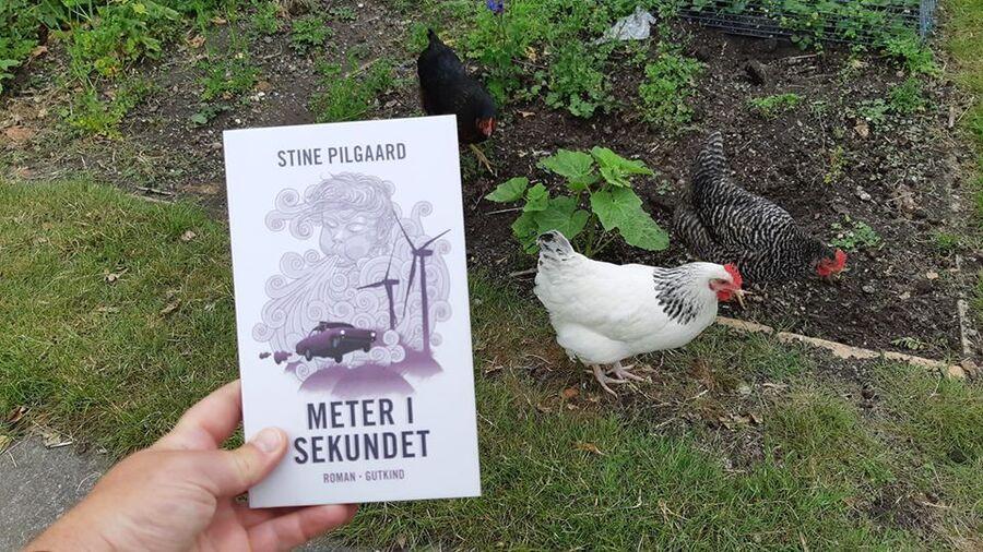 Foto af romanen Meter i sekundet