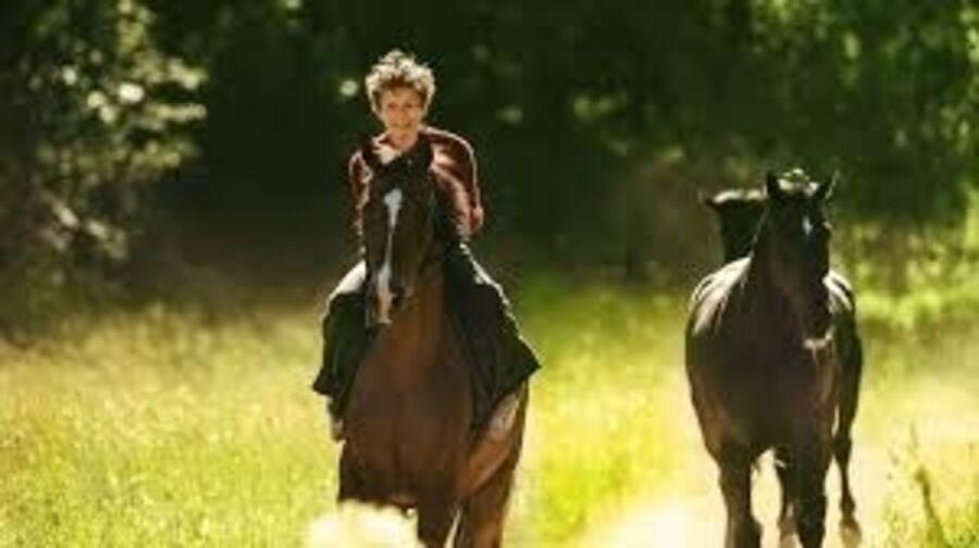 Billede fra filmen Ud og stjæle heste