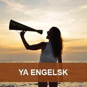 Litteratur på engelsk
