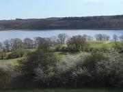 Foto af Hørhaven ved Tystrup-Bavelse søerne